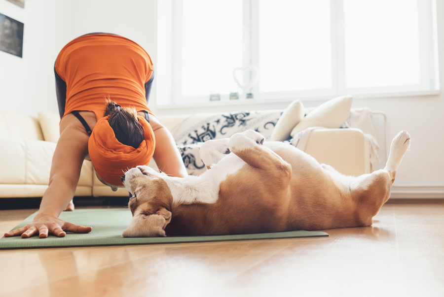 Dog Owners and Exercise – What The Research Shows