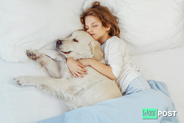 How Having A Dog Can Help You Cope With Anxiety