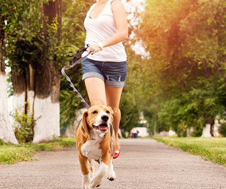 Owning A Dog Cuts Your Chances Of Dying By 24 Percent
