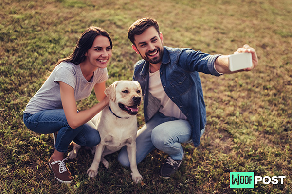 How To Take Great Dog Photos With Your Phone's Camera – 5 Easy Steps