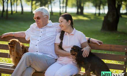 The Best Dog Breeds for Seniors