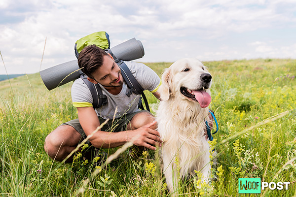 Hiking With Your Dog – What You Must Know
